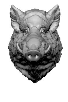 Using my Wild Boar head sculpture and Nick's comic style shaders for zbrush i get few pictures including some line art, shadows, depth map. I combined it in Photoshop and added a few touches by hand. Animated GIF by steps.