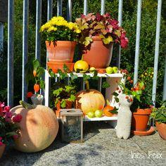 1000 images about diy by ines felix on pinterest for Herbstdeko kurbis