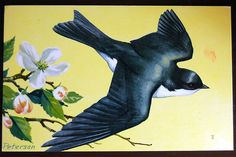 Tree swallow vintage postcard by calloohcallay, via Flickr
