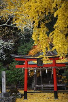 Iwato Ochiba shrine, Kyoto, Japan