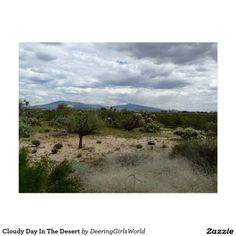 Cloudy Day In The Desert Postcard