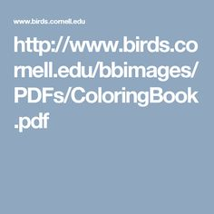 http://www.birds.cornell.edu/bbimages/PDFs/ColoringBook.pdf