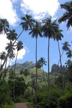 Nuku Hiva, Marquesas Islands, French Polynesia