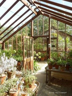 #greenhouse glass house conservatory hot house orangery #greenhouseideas