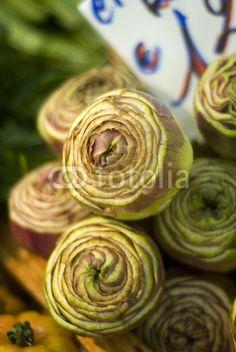 Verdure © morgan capasso © 2013