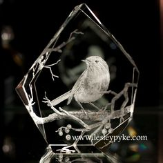 Little demo of the hand (drill) engraving of this little robin......Glass engraving techniques