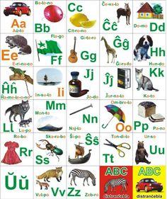 esperanto - Google-keresés