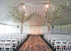 A whisper, a look, a a feeling of expectancy, a reverence of beauty, and a of courtship. Photo By: Wedding Trees, Wedding Ceremony, Nature Decor, Wedding Season, Whisper, Event Design, Greenery, Celebration, Blush