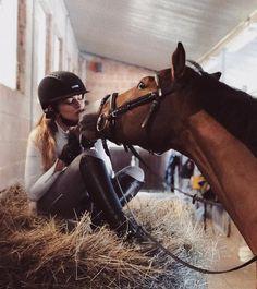 horse Pferd - Art Of Equitation Cute Horses, Pretty Horses, Horse Love, Beautiful Horses, Horse Girl Photography, Equine Photography, Horse Photos, Horse Pictures, Foto Cowgirl