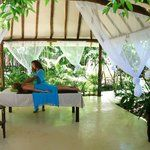 Los Colibries Mayan Jungle Spa Mexico Christmas, Puerto Morelos, Riviera Maya, Trip Advisor, Spa, Tours, Activities, Outdoor Decor