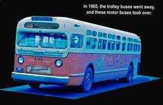 Cincinnati Transit bus, '60s vintage.