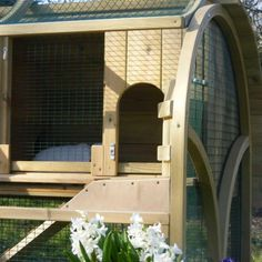 The Rabbit & Guinea Pig House - view 3