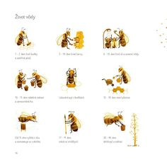 Labyrint Bee Theme, Queen Bees, Felt Animals, Activities For Kids, Homeschool, Education, Illustration, Dibujo, Bees
