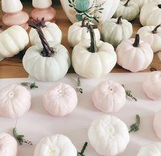 Coco Rose Diaries Coco Rose Diaries, Pip Studio, Peter Rabbit, Pumpkin, Diy Crafts, Autumn, Creative, Inspiration, Color