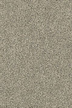 Our company often get asked what my most loved project is until this year. We have done our fair share of DIY and home improvements over the years. I love the carpet idea in this DIY project Textured Carpet, Carpet Samples, Carpet Trends, Pet Odors, Best Carpet, Carpet Colors, Carpet Flooring, Product Offering, Textures Patterns