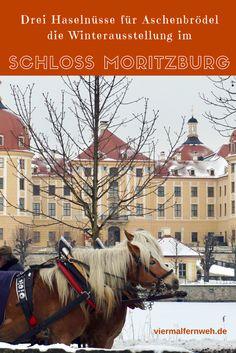 Die Ausstellung zum Kultfilm Drei Haselnüsse für Aschenbrödel, absolut Sehenswert. #Sachsen #Familie #Schloss #Film #ReisenmitKindern