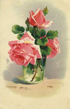 Roses Anciennes en France - Galerie d'images de Roses Anciennes peintes par Catharina Klein