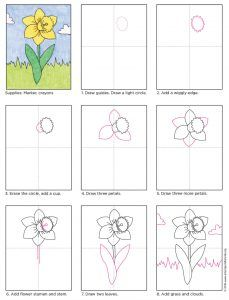 Draw a Daffodil – Art Projects for Kids - Situsku Drawing Projects, Drawing Lessons, Art Projects, Drawing For Kids, Art For Kids, Spring Art, Spring Painting, Art Lessons Elementary, Step By Step Drawing