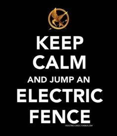 Hunger Games Keep Calm and jump an electric fence