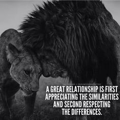 I find this so true. Wise Quotes, Qoutes, Motivational Quotes, Inspirational Quotes, Quotations, Lioness Quotes, Lion Couple, Lion And Lioness, Lion Love