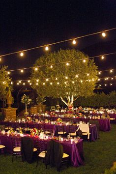 Summer garden party in the back yard.... love the lights!