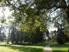 Castle Park, Bangor, Co Down, Northern Ireland.