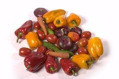 kidney cleanse remedies Fruit and veggies can help fight kidney disease. Healthy Kidney Diet, Kidney Health, Kidney Foods, Healthy Food, Healthy Eating, Kidney Failure Symptoms, Kidney Disease Symptoms, Kidney Detox Cleanse, Beauty