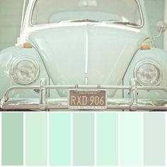 Mint green color pallete  LOL I used to have a 67 VW bug, in white tho'
