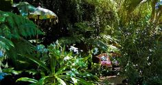 bali landscape | Tropical landscape design, 'a hint of Bali', by Devas Gardens