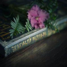 зеленый рыцарь, книга, мистический реализм, фэнтези, эльфы, феи, друиды, зачарованный лес