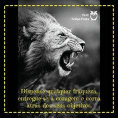 #coach #coaching #estrategia #concursos #estrategiaconcursos #concurseiro #guerreiro #foco #força #fé #objetivos #coragem