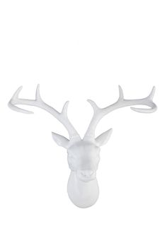 "Meet Mr Stag, he is proud, he is strong and he likes to hang out on your wall. He is Mr Stag... <br> Dimensions: 38cmL x 44cmW x 15cmD/ 14.96"" x 17.32"" x 5.90"" <br> Composition: Porcelain <br/>"