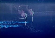 Disney's Fantasia Ice fairies.
