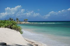 SIX MORE WEEKS!!!!!!!   A Brief Guide to Montego Bay : Sightseeing, Top Attractions