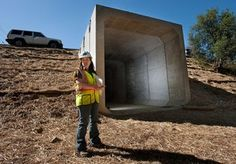 Tunnel, fence near Shingle Springs to help critters cross Hwy. 50