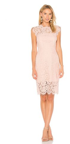 Suzette Dress by Rachel Zoe. Poly blend. Hand wash cold. Fully lined. Allover lace fabric with scalloped edges. Hidden back zipper closure. RZOE-W...