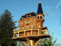Extreem luxe vogelhuisje