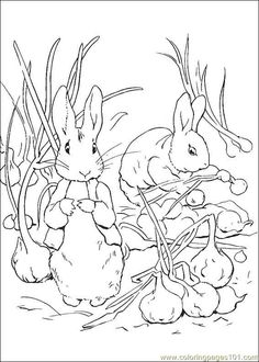 free printable peter rabbit coloring pages for kids color this online pictures and sheets and color a book of peter rabbit coloring pages