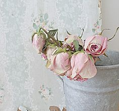 Shabby french for me: ~ Finds ~