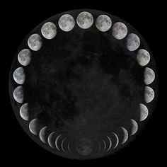 moon phases. #ilovethemoon