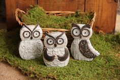 """An adorable set of three owls are made of resin. They are perfect to tuck in a bookshelf or use them on a tray or counter top. 4.25""""H. Basket not included."""