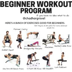 8 Weeks Workout Programme For Beginners Beginner Workout Program, Gym Workout Tips, Easy Workouts, Workout Programs, Week Workout, Fitness Workouts, Dead Lift Workout, Squats And Lunges, Workout Exercises