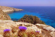 Lampedusa, Sicily. Panoramio image ID 53601272
