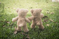 Related image Museum Of Childhood, Teddy Bear, Toys, Animals, Image, Activity Toys, Animales, Animaux, Clearance Toys