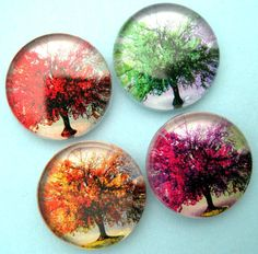 Four Seasons of Trees - Glass Magnet Set for glass, magnets, adhesive: http://www.ecrafty.com/c-81-craft-supplies.aspx