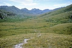 Access track to Lake Pedder. SW Tasmania, 27th December, 1969.