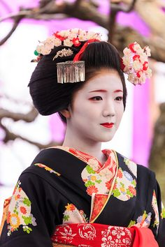 梅花祭・お茶席編(北野天満宮) : 花景色-K.W.C. PhotoBlog