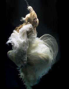 Underwater art.