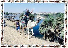 Flavio Calazans safari no rio Nilo de Camelo, Egito maio 2017