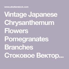 Vintage Japanese Chrysanthemum Flowers Pomegranates Branches Стоковое Векторное Изображение 497689294 - Shutterstock